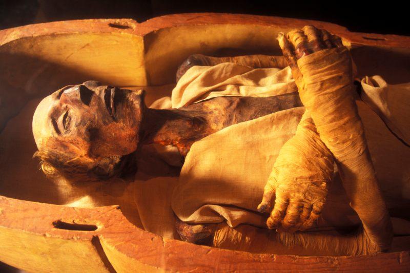 mumia-ramzesa-ii