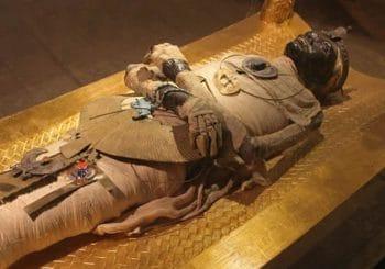 Nový objav v egyptských katakombách
