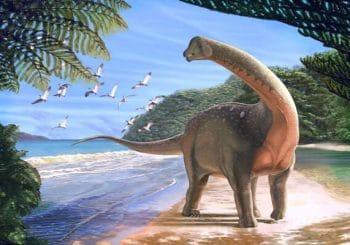 Nový dinosaurus zmenil pohľad vedcov na ďalekú históriu