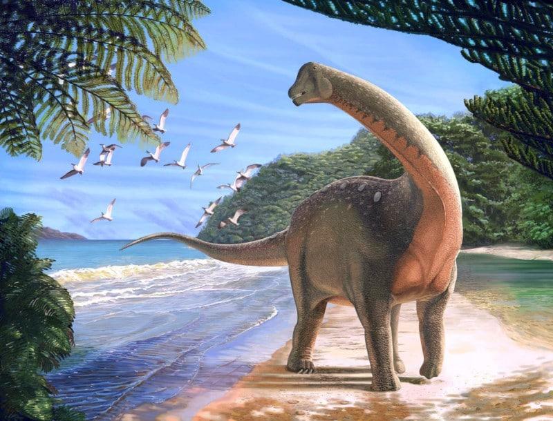 Mansourasaurus shahinae
